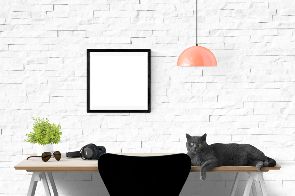 Free Single Frame with Cat Mockup